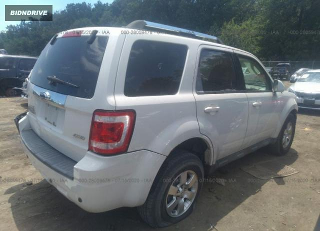 Lot #1611286970 2009 FORD ESCAPE LIMITED salvage car