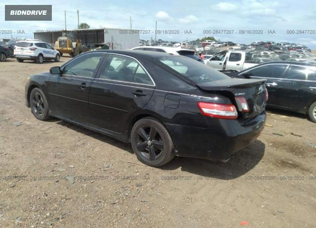 Lot #1611850368 2010 TOYOTA CAMRY salvage car
