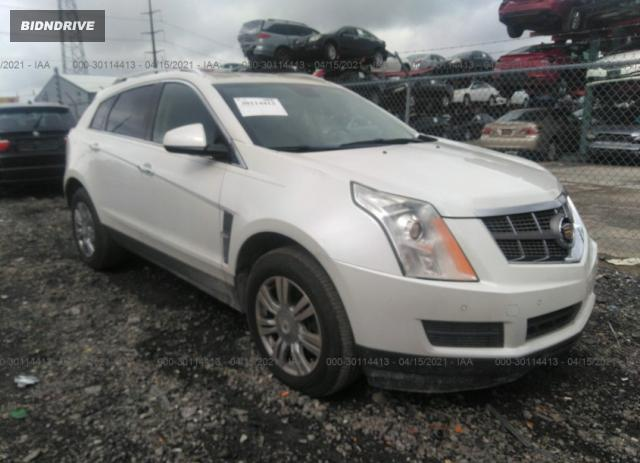 Lot #1694430022 2010 CADILLAC SRX LUXURY COLLECTION salvage car