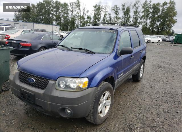Lot #1711425342 2006 FORD ESCAPE HEV salvage car