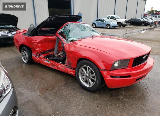 Lot #1730916725 2005 FORD MUSTANG salvage car